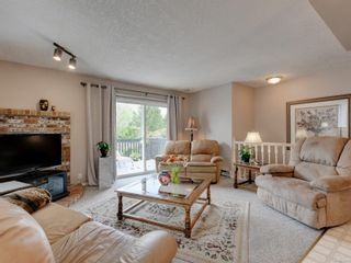 Photo 7: 3908 Lianne Pl in : SW Strawberry Vale House for sale (Saanich West)  : MLS®# 875878