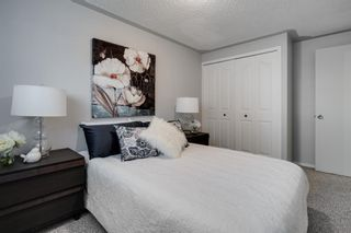 Photo 13: 43 Doverdale Mews SE in Calgary: Dover Row/Townhouse for sale : MLS®# A1052608