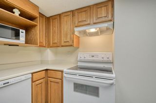 Photo 15: 201 2425 90 Avenue SW in Calgary: Palliser Apartment for sale : MLS®# A1052664