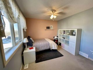 Photo 29: 123 Drake Landing Common: Okotoks Detached for sale : MLS®# A1074912