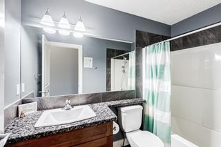 Photo 18: 503 17 Avenue NW in Calgary: Mount Pleasant Semi Detached for sale : MLS®# A1122825