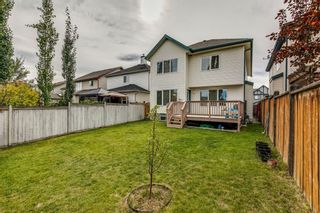 Photo 42: 18 Copperfield Crescent SE in Calgary: Copperfield Detached for sale : MLS®# A1141643