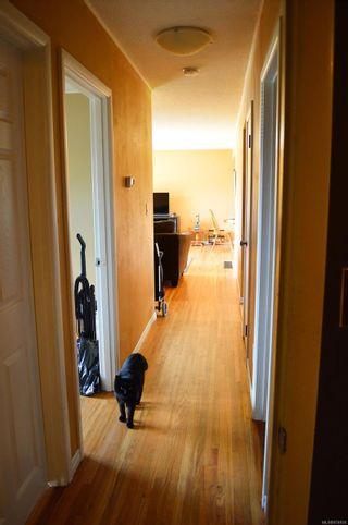Photo 22: 3775 Maitland St in : PA Port Alberni House for sale (Port Alberni)  : MLS®# 874930