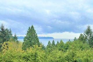 Photo 4:  in West Vancouver: Caulfeild House for sale : MLS®# AR148
