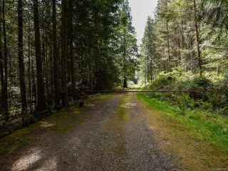 Photo 4: 5999 FORBIDDEN PLATEAU ROAD in COURTENAY: CV Courtenay West House for sale (Comox Valley)  : MLS®# 787510