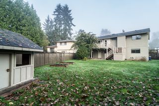 Photo 40: 3010 REECE Avenue in Coquitlam: Meadow Brook House for sale : MLS®# V1091860