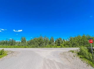 Photo 12: LOTS 1 & 2 E RED ROCK Road in Red Rock / Stoner: Red Rock/Stoner Industrial for sale (PG Rural South (Zone 78))  : MLS®# C8038836