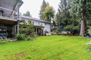 "Photo 36: 52364 YALE Road in Rosedale: Rosedale Popkum House for sale in ""ROSEDALE"" : MLS®# R2622914"
