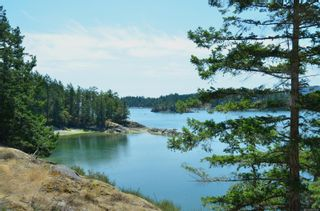 Photo 25: 1095 Nose Point Rd in : GI Salt Spring Land for sale (Gulf Islands)  : MLS®# 881923