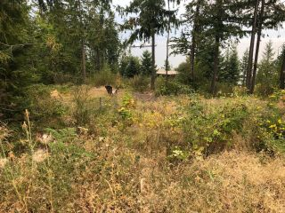 Photo 5: 8655 PROCTER EAST ROAD in Procter: Vacant Land for sale : MLS®# 2460291