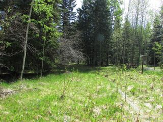 Photo 4: 127, 5241 TWP Rd 325A: Rural Mountain View County Land for sale : MLS®# C4299936