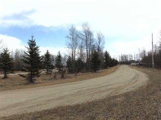 Photo 11: 81 15065 TWP RD 470: Rural Wetaskiwin County Rural Land/Vacant Lot for sale : MLS®# E4240270