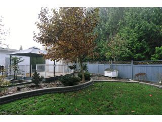 Photo 9: 22550 KENDRICK Loop in Maple Ridge: East Central House for sale : MLS®# V980344