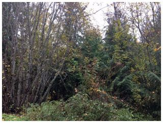 Photo 8: 1546 Blind Bay Road in Blind Bay: Vacant Land for sale : MLS®# 10125568