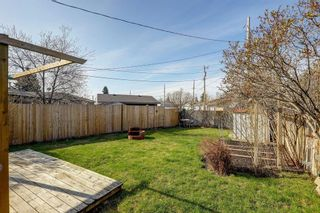Photo 29: 4115 DOVERBROOK Road SE in Calgary: Dover Detached for sale : MLS®# C4295946