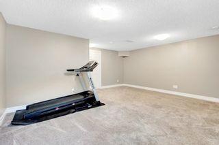 Photo 23: 3924 6 Street in Edmonton: Zone 30 House Half Duplex for sale : MLS®# E4264000