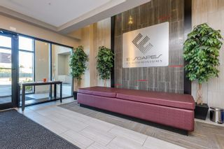 Photo 5: 213 11080 ELLERSLIE Road in Edmonton: Zone 55 Condo for sale : MLS®# E4263614