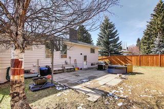Photo 44: 6115 Dalcastle Crescent NW in Calgary: Dalhousie Detached for sale : MLS®# A1096650