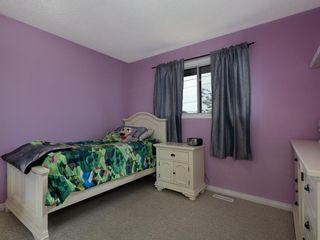 Photo 14: 4108 58 Street NE in Calgary: Temple Semi Detached for sale : MLS®# A1114394