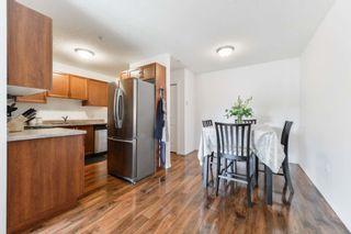 Photo 6: 203 10710 116 Street in Edmonton: Zone 08 Condo for sale : MLS®# E4257396
