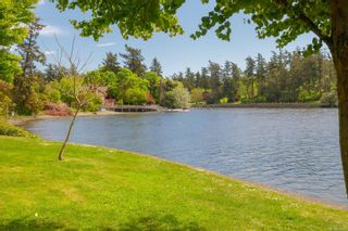 Photo 3: 398 W Gorge Rd in : SW Tillicum House for sale (Saanich West)  : MLS®# 874379