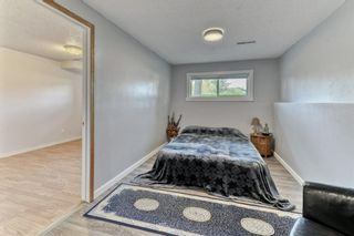 Photo 25: 703 Alderwood Place SE in Calgary: Acadia Detached for sale : MLS®# A1131581