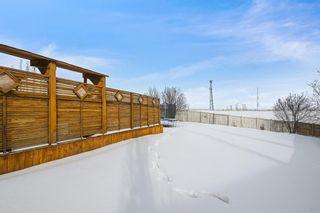 Photo 36: 82 Citadel Mesa Close NW in Calgary: Citadel Detached for sale : MLS®# A1073276
