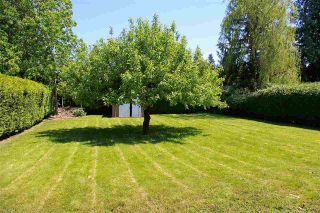 Photo 11: 9564 MENZIES Street in Chilliwack: Chilliwack E Young-Yale House for sale : MLS®# R2169143