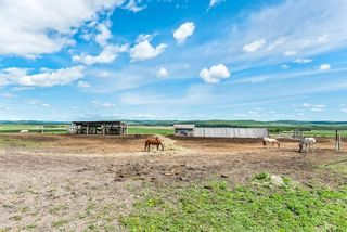 Photo 38: 386091 112 Street: Rural Foothills County Detached for sale : MLS®# C4301628