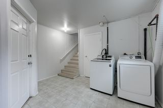 Photo 18: 12123 61 Street NW in Edmonton: House for sale : MLS®# E4166111