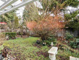 Photo 23: 21075 122 Avenue in Maple Ridge: Northwest Maple Ridge House for sale : MLS®# R2534001