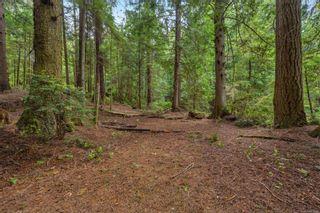 Photo 7: LOT 9 West Coast Rd in : Sk West Coast Rd Land for sale (Sooke)  : MLS®# 876669
