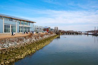"""Photo 33: 205 4211 BAYVIEW Street in Richmond: Steveston South Condo for sale in """"THE VILLAGE"""" : MLS®# R2550894"""