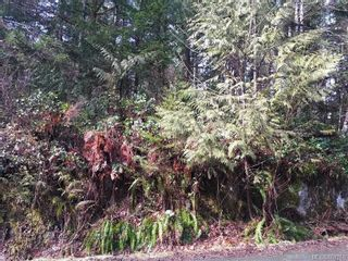 Photo 10: LOT 8 MACMILLAN Dr in : PA Sproat Lake Land for sale (Port Alberni)  : MLS®# 868768