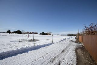 Photo 26: 1131 Strathcona Road: Strathmore Detached for sale : MLS®# A1075369