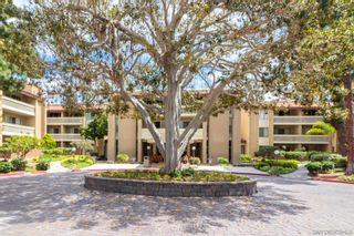 Photo 35: PACIFIC BEACH Condo for sale : 1 bedrooms : 1775 Diamond St #1-102 in San Diego