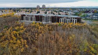 Photo 5: 205 15 Cougar Ridge Landing SW in Calgary: Cougar Ridge Apartment for sale : MLS®# A1096763
