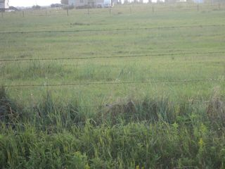 Photo 6: 1 Minto Street: Granum Residential Land for sale : MLS®# A1137436