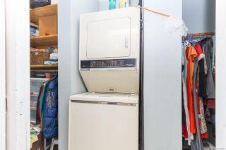 Photo 20: 1512 Pearl St in Victoria: Vi Oaklands Half Duplex for sale : MLS®# 853894