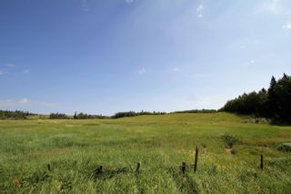 Photo 16: Rg Rd 120 Twp Rd 610: Rural St. Paul County Rural Land/Vacant Lot for sale : MLS®# E4263791