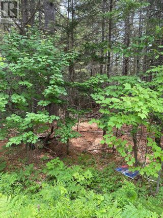 Photo 3: Lot Italy Cross Road in Crousetown: Vacant Land for sale : MLS®# 202117994