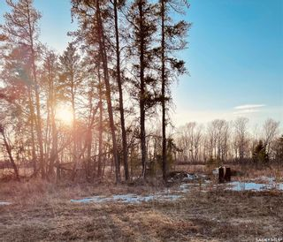 Photo 3: Over 1 acre lots in Hudson Bay: Lot/Land for sale : MLS®# SK850475