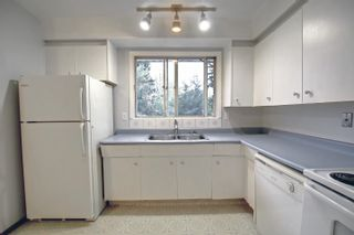 Photo 12: 15223 61 Street in Edmonton: Zone 02 House for sale : MLS®# E4264134