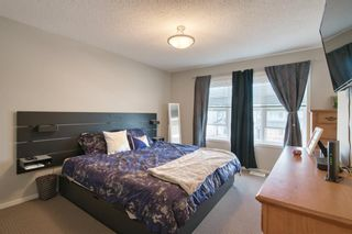 Photo 23: 113 Copperstone Circle SE in Calgary: Copperfield Detached for sale : MLS®# A1103397