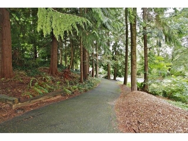 Photo 14: Photos: 29 Clovermeadows Cr in Langley: Salmon River House for sale : MLS®# F1429992