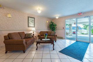 Photo 40: 308 1686 Balmoral Ave in : CV Comox (Town of) Condo for sale (Comox Valley)  : MLS®# 861312