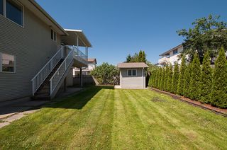 Photo 39: 12062 201B Street in Maple Ridge: Northwest Maple Ridge House for sale : MLS®# V1074754