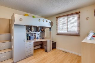 Photo 28: 93 ABERDARE Road NE in Calgary: Abbeydale Detached for sale : MLS®# C4240941