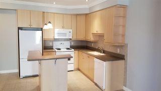 Photo 4: 313 10116 80 Avenue in Edmonton: Zone 17 Condo for sale : MLS®# E4229427