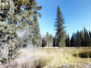 Photo 4: 53018 RANGE RD 175 in Rural Yellowhead County: Vacant Land for sale : MLS®# AW38443